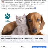 Orange Hotel : post Facebook pet friendly