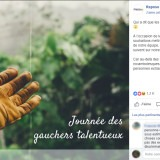 Raposo - Facebook Ads : journée des guchers
